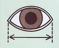 Eye Measurement Instructions