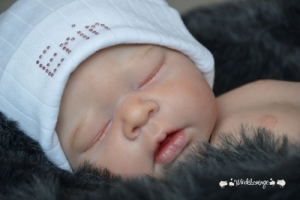 Erin - Reborn Doll Kit - by Adrie Stoete