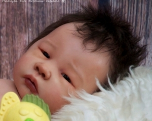 Luli - Reborn Doll Kit - by Adrie Stoete