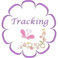 Tracking an Order